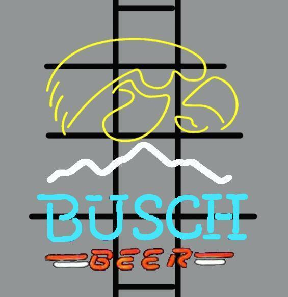 Busch Beer iowa hawkeyes Neon Sign NCAA Sports Neon Light